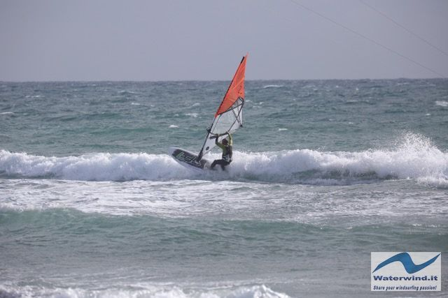 Windsurf Simmer Blacktip 2018 3